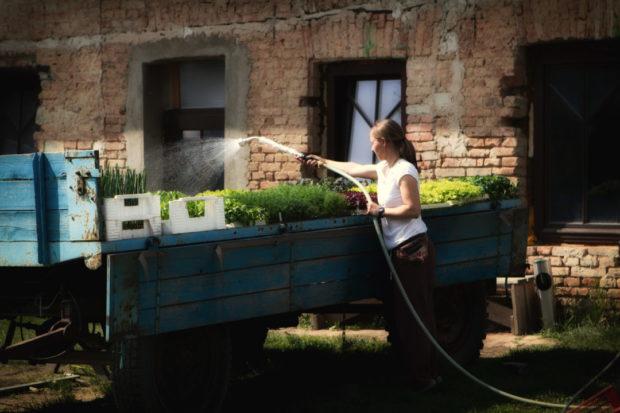 Práce s biobylinkami ve Svobodném statku na soutoku