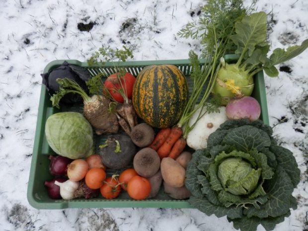 Zákazníci ekofarmy Kozozel dostanou bedýnku i v zimě