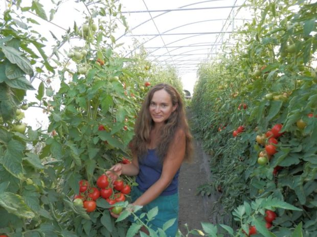 Na farmě Kozozel mají vedle skleníků květiny