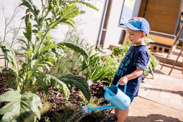 Bylinková zahrada v Čejkovicích láká také dětské návštěvníky