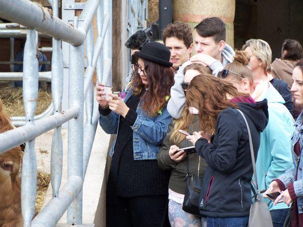 Exkurze Kunclův mlýn - děti si fotí krávy