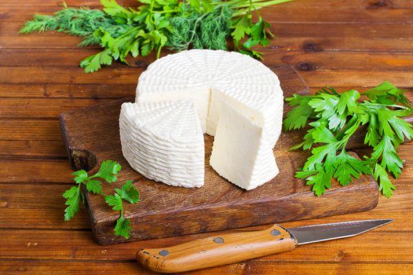 Na ekofarmě Agrofyto zpracovávají sýry ve vlastní minimlékárně.