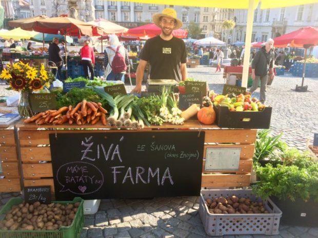 Živá farma na trzích v Brně