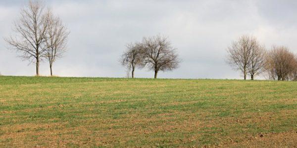 Polní den na ekofarmě Javorník