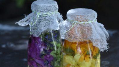 """""""V létě pijeme často sluneční vodu se sezónními květy či bylinkami."""""""